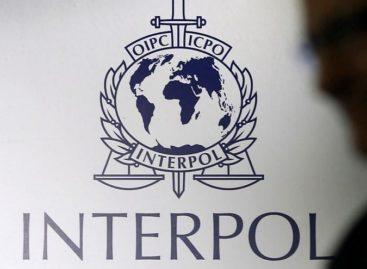 Interpol: Peste 500 de tone de medicamente contrafăcute au fost confiscate într-o mare operațiune globală care a implicat 116 țări, inclusiv România