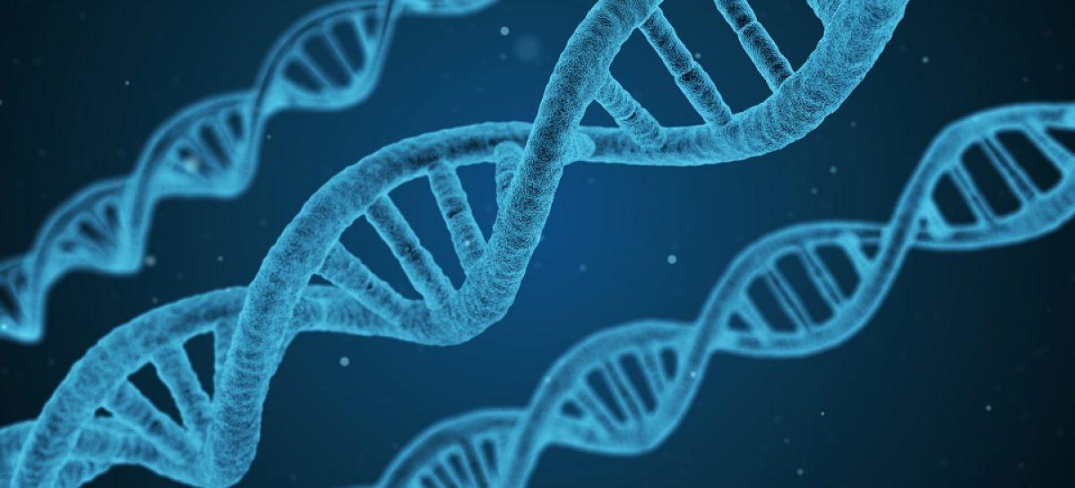 O nouă metodă genetică mai ieftină, ce poate identifica tumorile extrem de agresive, dezvoltată de cercetătorii suedezi