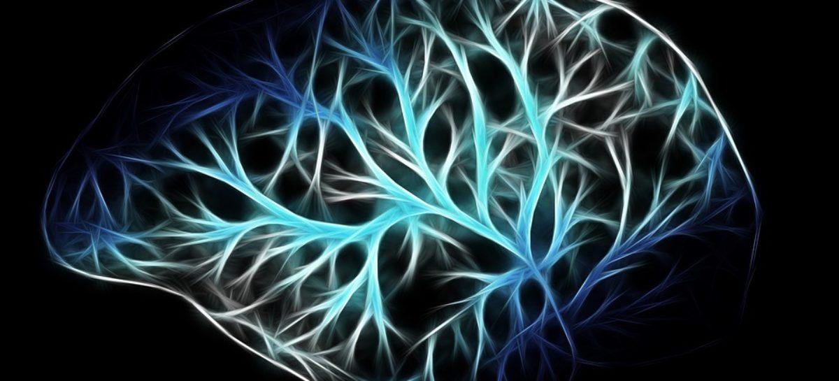 Tulburările de somatizare sunt asociate cu modificări ale conectivității funcționale cerebrale, susțin cercetătorii sud-coreeni