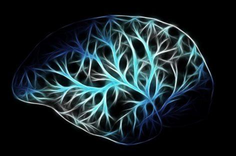 O mutație a proteinelor este cauza dezvoltării anormale a sistemului nervos, arată un studiu realizat în SUA
