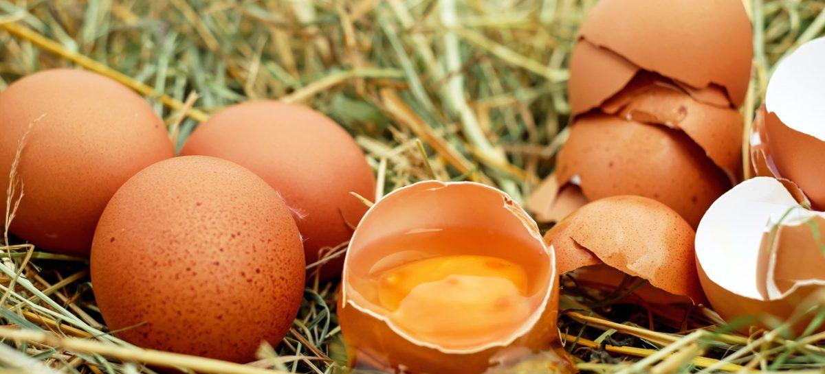 Consumul unui ou pe zi nu are efecte negative asupra sănătății, arată un studiu extins realizat în Spania