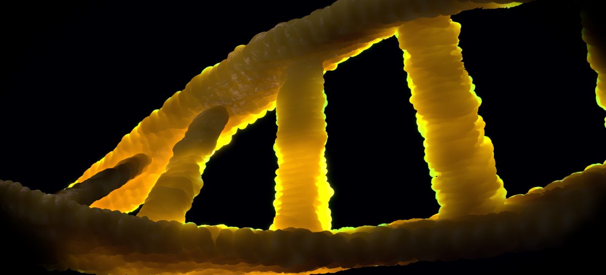 Un mecanism esențial pentru a detecta anomaliile în cazul fertilizării in vitro, descoperit de cercetători europeni
