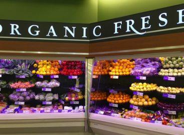 Nutrienții aduc beneficii sănătății doar dacă provin din alimente și nu din suplimente alimentare, arată un studiu realizat în SUA