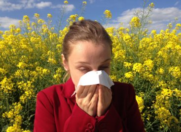 Factorii de mediu la care sunt expuși copiii le influențează decisiv imunitatea, arată un studiu realizat în Finlanda