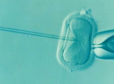 Subprogramul de fertilizare in vitro din România va fi reorganizat în acest an și va deconta mai multe proceduri
