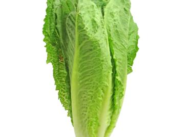 SUA și Canada avertizează asupra apariției E.coli în salată