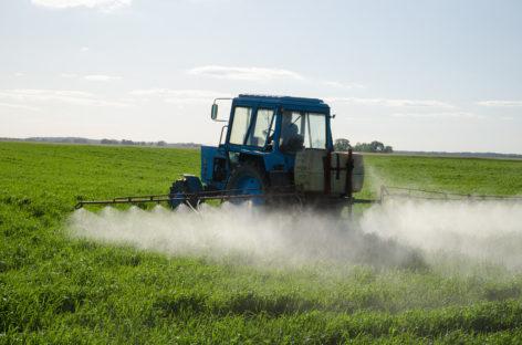 Franța a interzis utilizarea unui fungicid din cauza pericolelor pentru sănătate