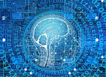 Analiza creierelor a 2.000 de persoane a oferit indicii cu privire la modul în care genele cresc riscul bolilor mintale