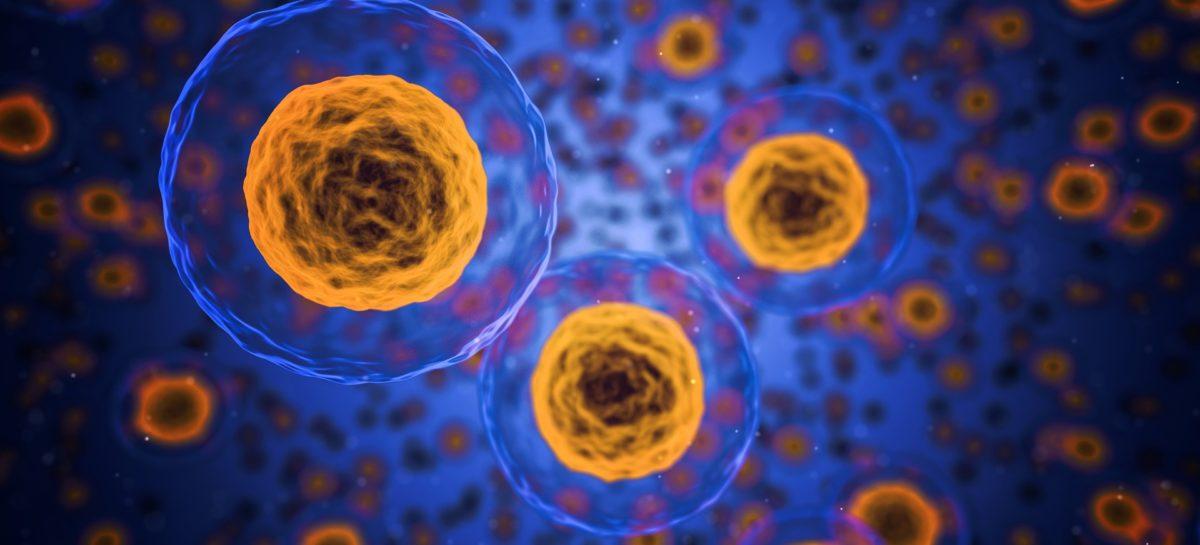 O nouă abordare terapeutică pentru combaterea limfomului