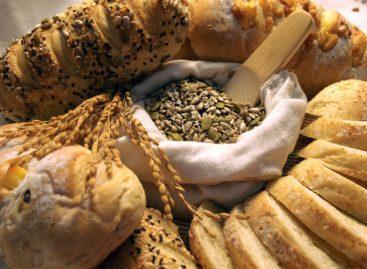 Aportul ridicat de fibre dietetice și cereale integrale asociat cu un risc redus de cancer și boli cardiovasculare