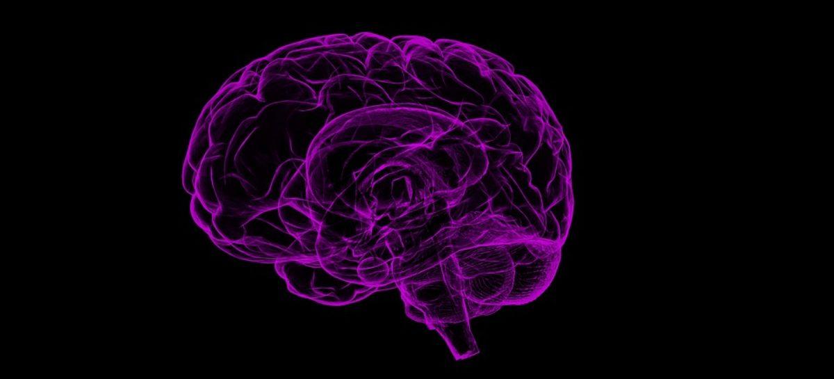 Bilirubina protejează celulele cerebrale împotriva daunelor cauzate de stresul oxidativ