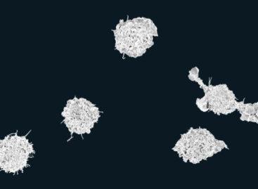 O nouă metodă pentru a stimula sistemul imunitar în lupta cu cancerul, descoperită de cercetători americani
