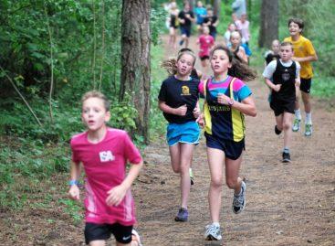 Activitatea fizică la copiii preșcolari le va influența sănătatea cardiovasculară în viața adultă