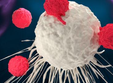 O echipă de cercetători americani a inventat nanoparticule care determină celulele din tumori să lupte cu cancerul