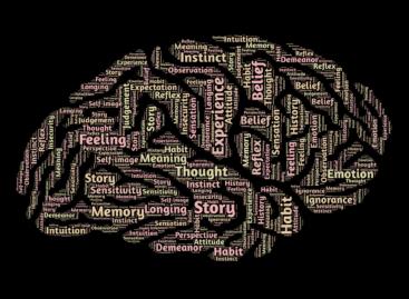 Inteligența socială este la fel de necesară pentru progresul omenirii ca și IQ-ul ridicat, susțin cercetătorii americani