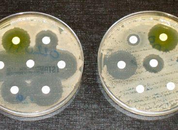Un nou test genetic pentru detectarea rezistenței bacteriilor la antibiotice inventat în SUA