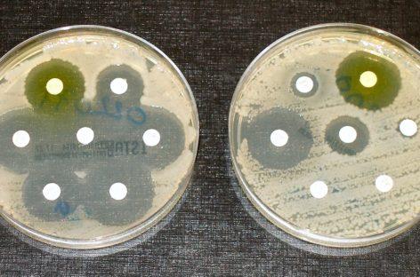 Un nou antibiotic ce conține arsenic este considerat eficient împotriva bacteriilor rezistente la medicamente