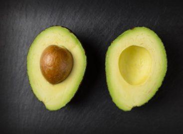 Un extract din semințe de avocado are un efect puternic antiinflamator, conform unui studiu realizat în SUA