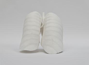 O tehnică inovatoare de imprimare 3D a țesuturilor, care permite crearea rețelelor vasculare, a fost dezvoltată de ingineri americani