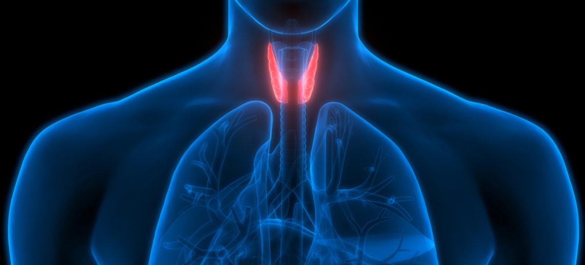 Campanie pentru creşterea gradului de conştientizare a afecţiunilor tiroidiene în România, pe fondul creșterii prevalenței