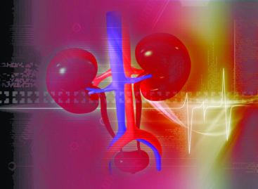 Instrument de calcul care prezice riscul de boală cronică renală