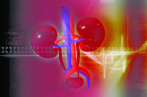 Studiu: Riscul de hipertensiune este mai crescut în cazul donatorilor de rinichi