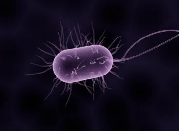 Nașterea naturală și cea prin cezariană produc diferențe în microbiota bebelușilor