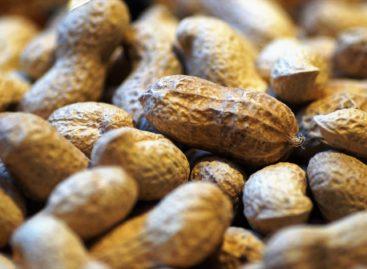 Prima terapie contra alergiei la arahide a primit aviz favorabil din partea unui grup de experți al FDA