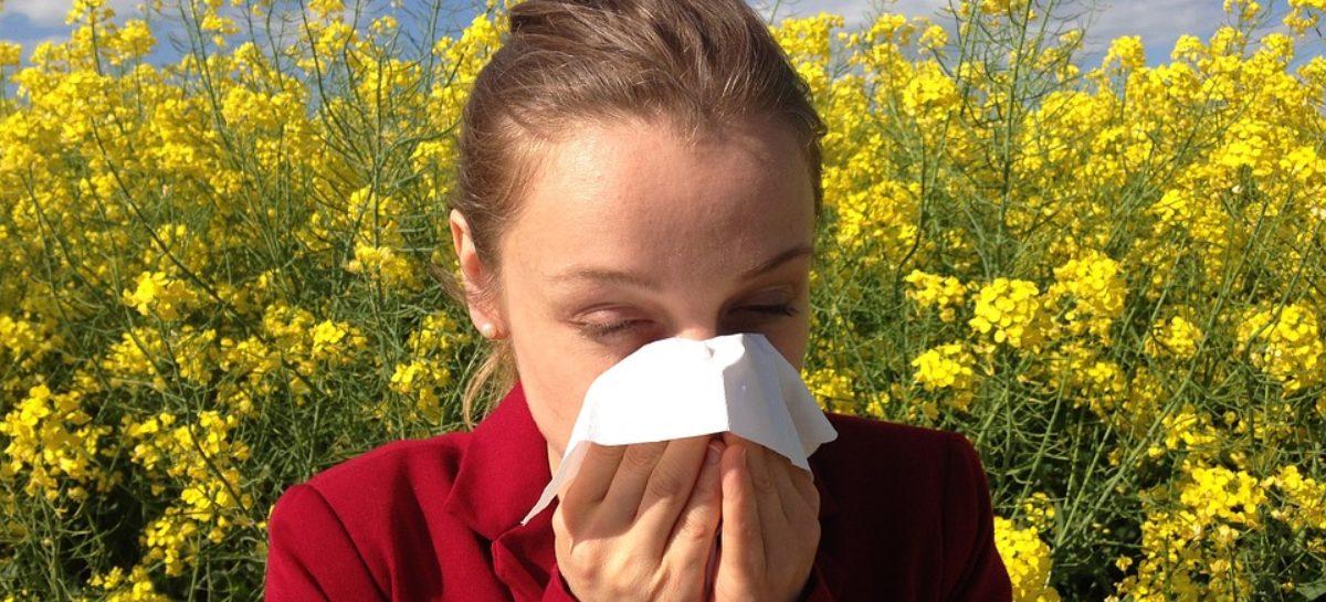 Tot ce trebuie să știți despre testele alergologice