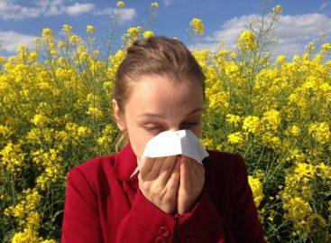 Studiu: Inhibitorii BTK pot preveni anafilaxia la pacienții cu alergii