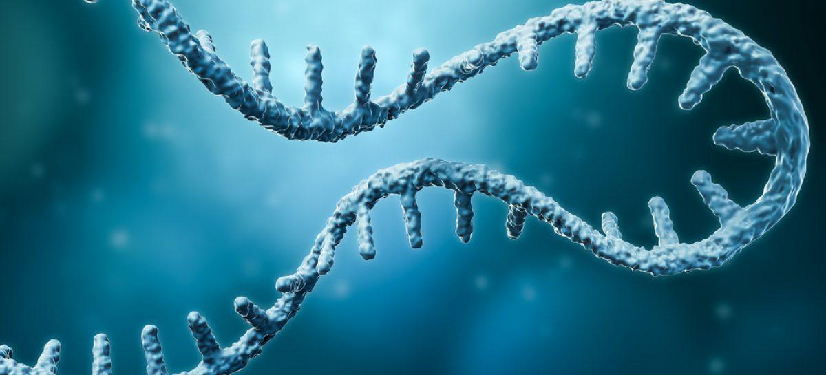 Sanofi a cumpărat compania americană Translate Bio, specializată în tehnologia ARN mesager