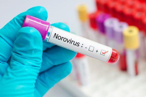 Epidemie de norovirus în județul Brașov, cu peste 140 de persoane infectate